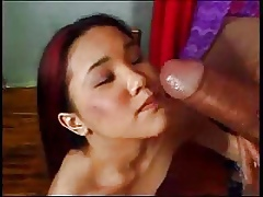Asian Dignitary Kitty sucking with the addition of making out expansively