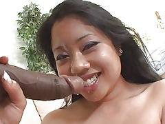 Kya Tropic Phat Asian 2