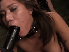 Chained lezdomsub strapon penetrated unconnected with guestimated three